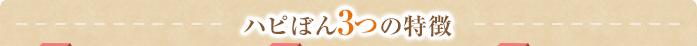 ハピぽん3つの特徴